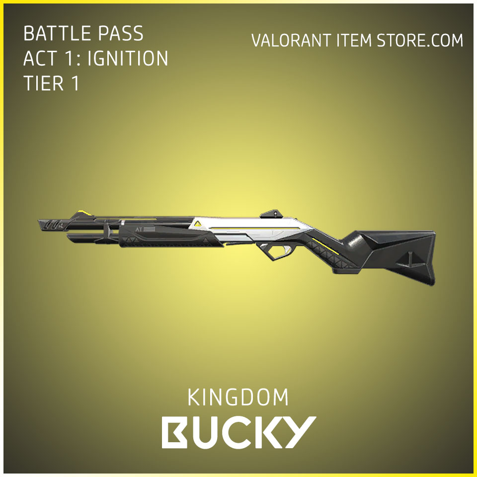 Kingdom Bucky Act 1 Ignition Tier 1 Valorant Skin